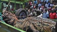 非洲捕获1吨重巨型食人鳄 已吃掉6人