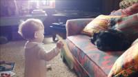 小宝宝对着猫咪发飙,猫咪一个表情,把宝宝吓得连忙后退
