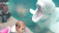 X国外熊孩子们与水族馆动物