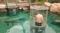 壮汉在笼子里被慢慢放入水中,鳄鱼朝他缓缓游过来,镜头记录过程