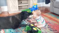 狗狗和宝宝玩得可嗨了,爸爸还要心情拍照,中国网友:妈见打