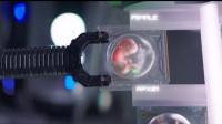 Netflix科幻新作!未来人类灭绝之后,由机器人重生人类《吾乃母亲》