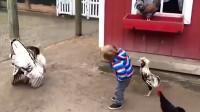 背后偷袭,真不是好鸡
