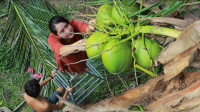 柬埔寨乡村主妇烹制传统美味的椰子果冻