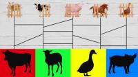 认识鸭子等5种常见家畜