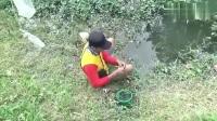 野钓之前捞一点水草,加点小料做成鱼饵,鱼口相当好!