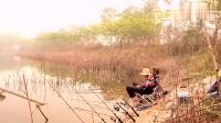 野钓海竿中鱼,大鱼却跑进了水草中,钓鱼人果断下水!