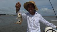 这样的钓口黄鳍鲷能卖60块一斤,小池钓到了好几条,还有其他海货