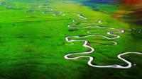 我国内蒙古有一条世界最窄的河流,大鱼挤着游,放一本书就能当桥