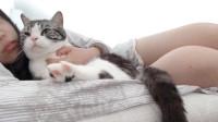 当不当猫无所谓,关键是我也想这样躺在妹子怀里