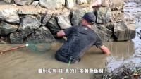 兄弟们今天抽水捉鱼,抽干水湖后发现好多野货,抓到停不下来