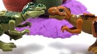 小恐龙第一次见到兄弟