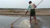 印度盐场实拍,粗盐就是这样加工出来的