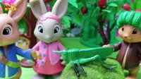 比得兔玩具故事:莉莉教本杰明认识蝗虫,莉莉真棒耶!