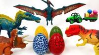 飞鸟翼龙孵化四颗恐龙蛋 组装小恐龙零部件