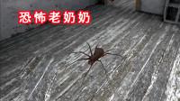 恐怖老奶奶:不好啦!蜘蛛和乌鸦都跑到外边来了