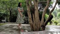 你可还记得家乡的《红枣树》     演唱:任妙音