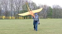 只要动力足,翼龙模型也能飞上天,这老头真是会玩