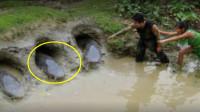 新疆湖泊水怪!牛羊总被拖下水,花79天抽干,不料发现世界奇迹