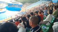 香港:高空缆车俯瞰大海 海洋剧场观赏驯兽