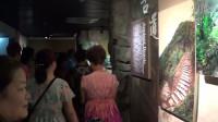 参观中国黑茶博物馆