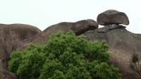 【走遍中国】走遍福建迷人又好玩的三都澳斗姆风景区