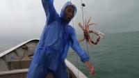 阿烽用绳圈钓螃蟹,在圈里放鱼肉,来抢食的红花蟹都被抓了