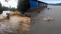 云南盈江遭暴雨袭击 实拍多地受灾:猪牛水中游 城里大浪几米高