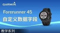 【教学】Forerunner 45 & 45S 自定义数据字段