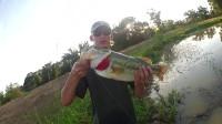 钓鱼之 技巧