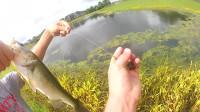 教你来钓鱼