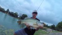 鲈鱼捕鱼视频-捕捉一个大鲈鱼