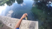 冒险 旅行  钓鱼