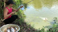 农村妹子钓鱼,一根鱼竿一个大盆一袋鱼饵,看看她钓了多少?