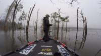 刺激的钓鱼锦标赛