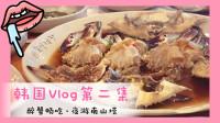 【爱茉莉兒】韩国vlog第二集畅吃醉蟹夜游南山塔