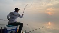 白条游钓天下第一塘,名不虚传真的大,改变钓法后连杆草鱼鳊鱼