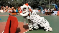 廣州市天河區龍獅運動協會@黃埔區雲埔街第一屆傳統南獅邀請賽