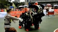 花都區龍獅運動會@黃埔區雲埔街第一屆傳統南獅邀請賽