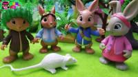 《比得兔》宠物小故事:本杰明竟然想抓老鼠当宠物,太可怕了!