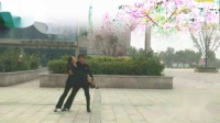 好心情蓝蓝广场舞 健梅团队交谊舞【三生石上一滴泪】视频制作蓝蓝
