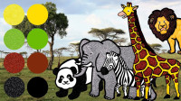 帮助大熊猫斑马大象寻找喜爱的食物