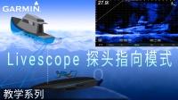 【教学】Livescope 探头指向模式