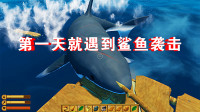 木筏求生01:灾难让我失去记忆,有只鲨鱼想吃我!