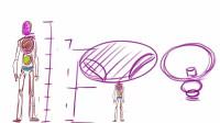 Q版漫画人物视频教程 12身体的变形(一)