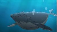 酷杰的科学之旅-海洋探秘02美丽的珊瑚礁