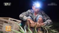 百合种植户要在半夜就起床摘百合,农民真不容易