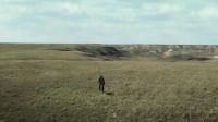 带你三分钟看完《阿尔法:狼伴归途》,一匹狼如何一步步变成了狼狗