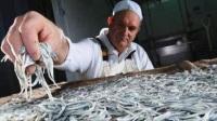 幼鳗是西班牙最昂贵的食物?看完满满都是,金钱的味道!