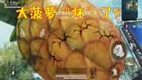 和平精英:出生岛大菠萝有缝隙切口?玩家怀疑特殊方法可打开!